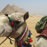 Чим зайнятися і як розважитися в Єгипті?