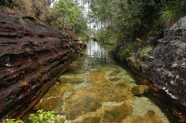 Кришталева річка