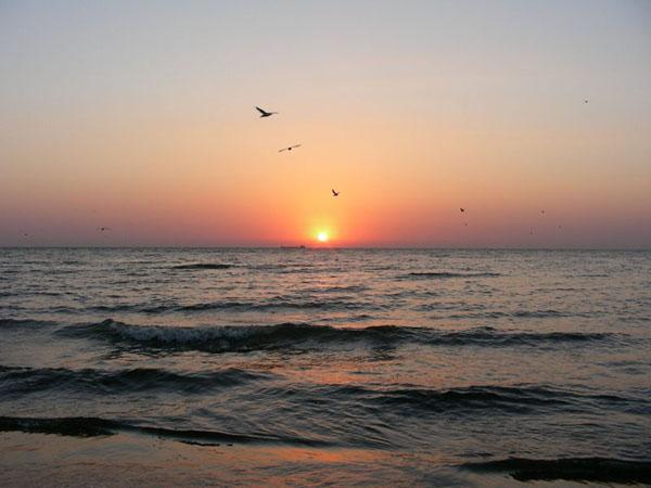 Море в Затоці