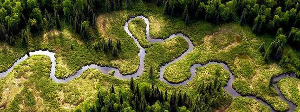 Найшвидша річка в світі