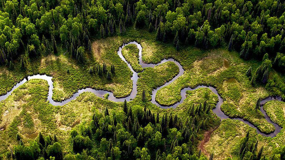 Красиве фото Амазонки