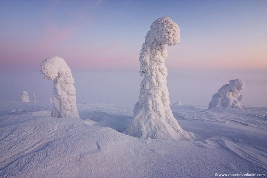 Вартові Арктики, Фінляндія
