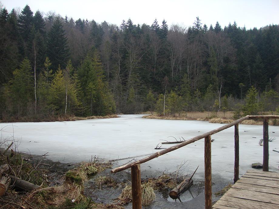 Озеро Журавлине