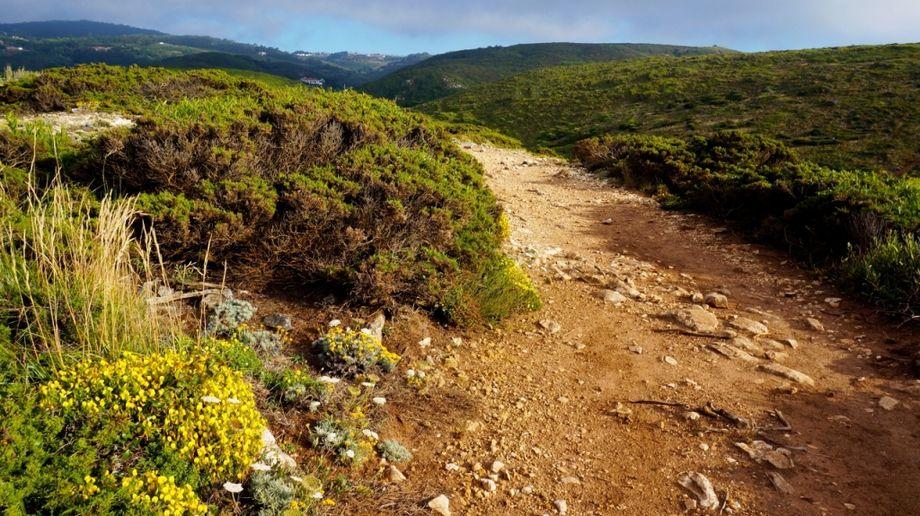 Pishokhidny-route-to-Cado-da-Roca-path
