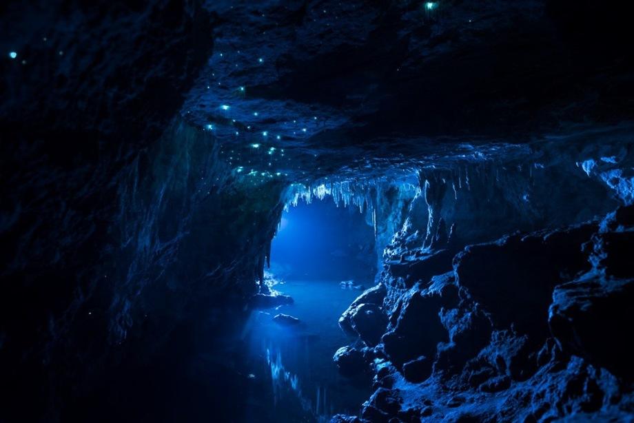 Зоряне небо під землею: печера світлячків в Новій Зеландії
