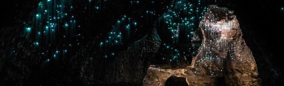 Зоряне небо під землею – печера світлячків в Новій Зеландії