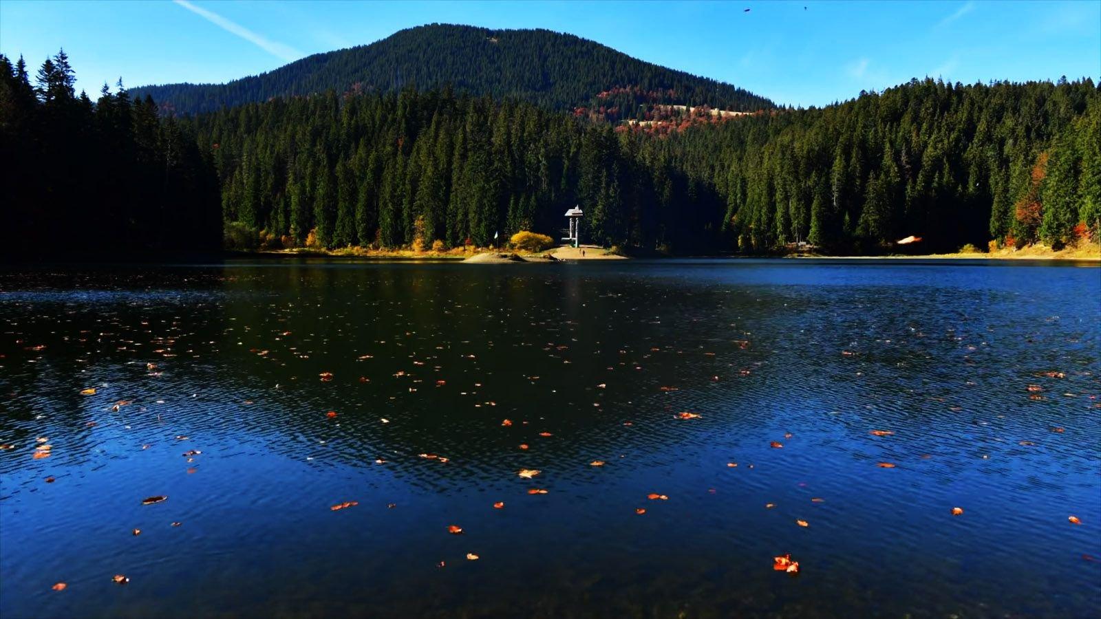 Unique-lake-Synevyr-in-Transcarpathia03