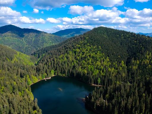 Unique-lake-Synevyr-in-Transcarpathia04